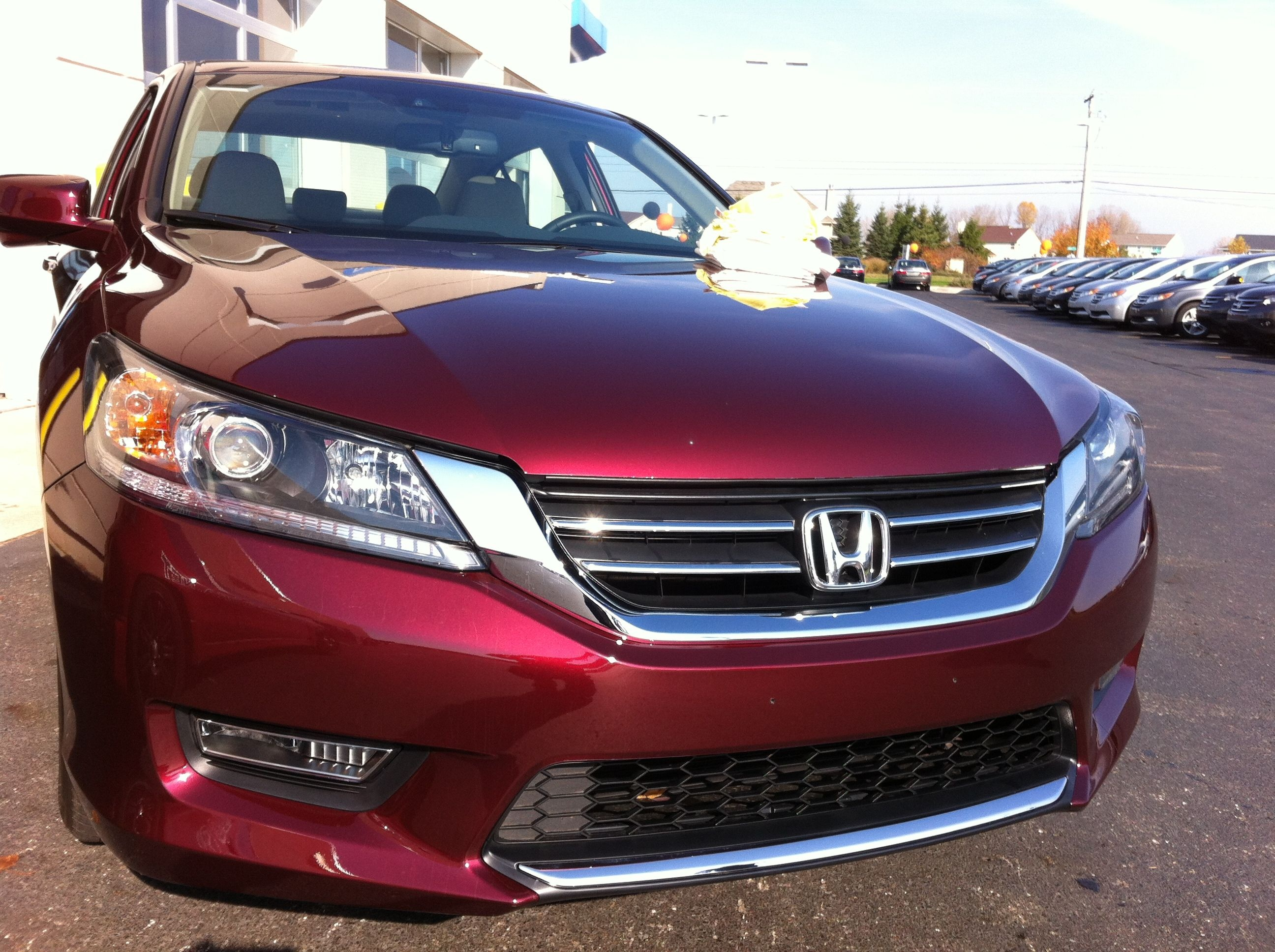 honda accord recent paint protection jobs pinterest honda