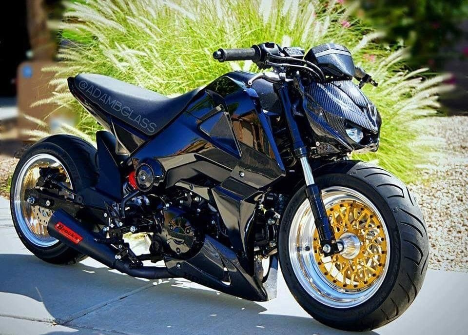 honda msx125 grom pinterest honda honda grom and motorcycle